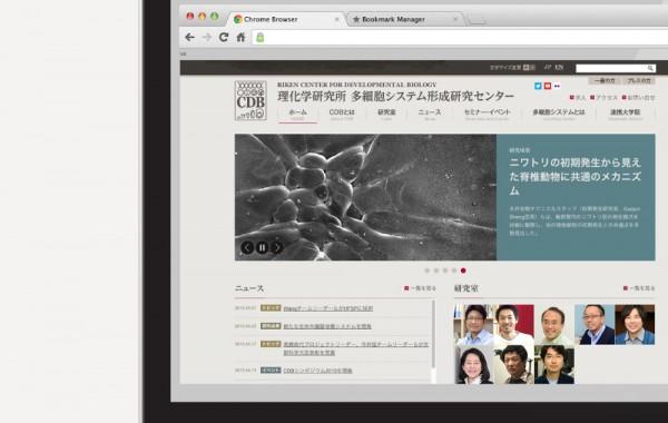 理化学研究所CDB様 ホームページ