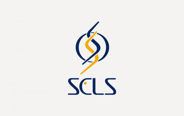 HPCI 戦略プログラム 分野1 (SCLS)様 ロゴマーク