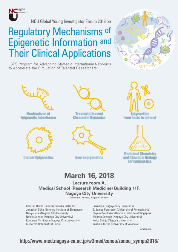 頭脳循環プログラム「エピゲノム情報制御機構の解明と臨床応用」(平成27年度~29年度)