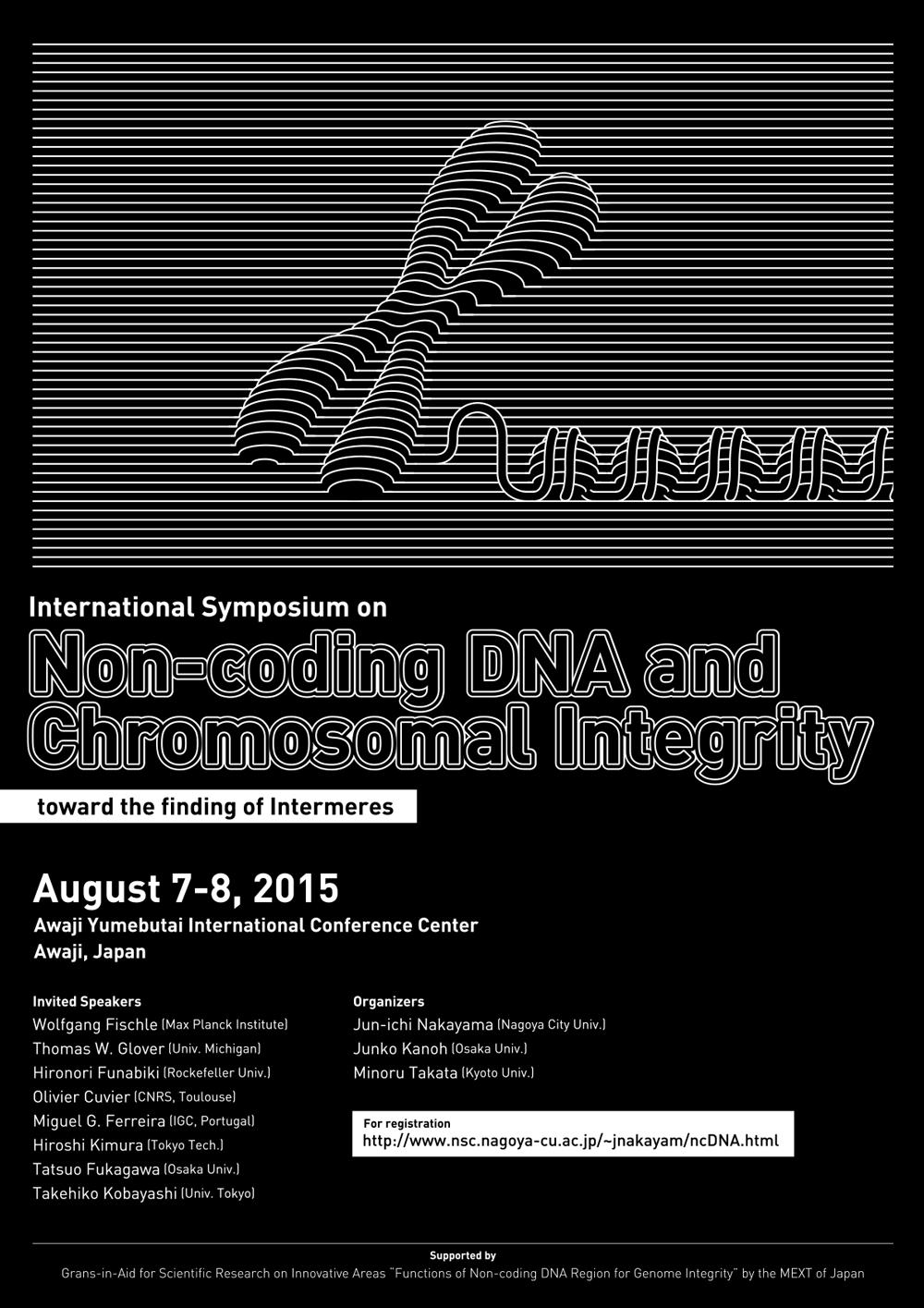 ゲノムを支える非コードDNA領域の機能